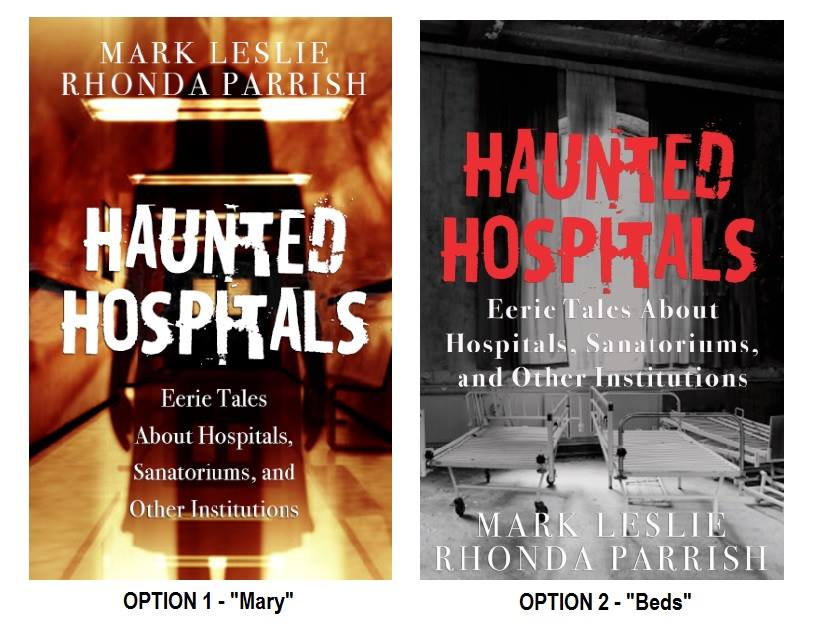 Haunted Hospitals Cover Options